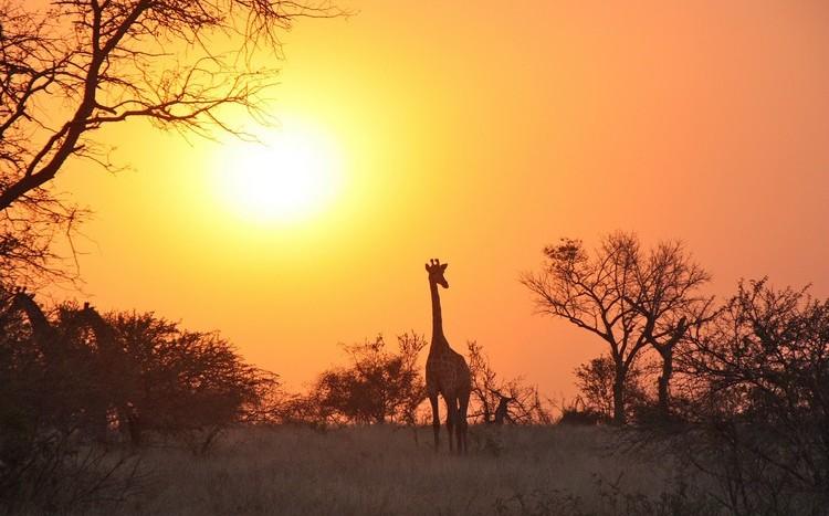 Zambia Holidays